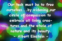 einstein_circleofcompassion