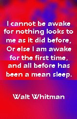 whitman_sleep