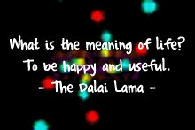 lama_meaningolife