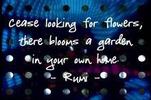 rumi_ceaselookingforflowers