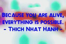 thich_everythingispossible