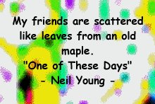 friends_neil_best