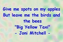 joni_bees_taxi