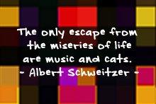 albert_schweitzer_musiccats_