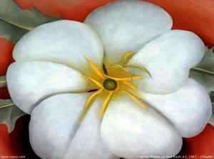 georgia-o-keeffe-white-flower-on-red-earth