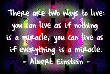 albert_miracle_best