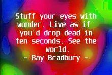 bradbury_stuffyoureyes