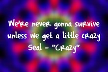 seal_crazy
