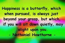 hawthorn_butterfly