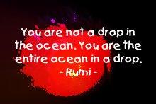 rumi_drop