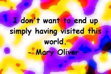 mary_oliver_visiting