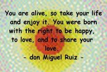 don_ruiz_life_best