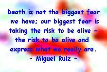 don_ruiz_risk