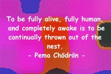 pema_fully