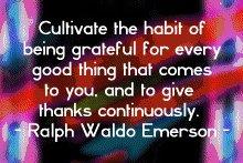 emerson_cultivate