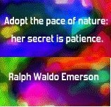 emerson_patience